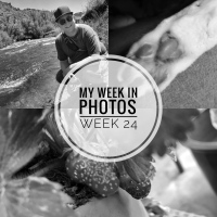 my week in photos -- week 24